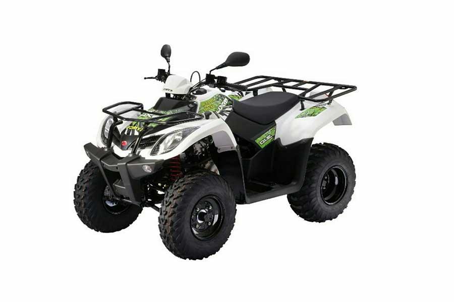 ATV 300R